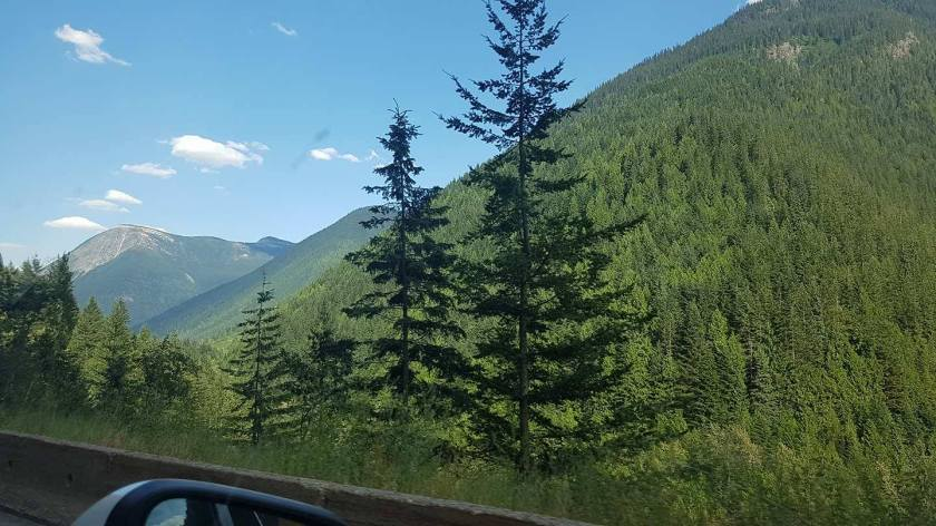 Honeymoon road trip through Canada, stunning mountain and lake views while driving.